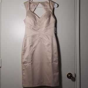 NWT Jessica Simpson Cocktail Dress (Champagne Clr)